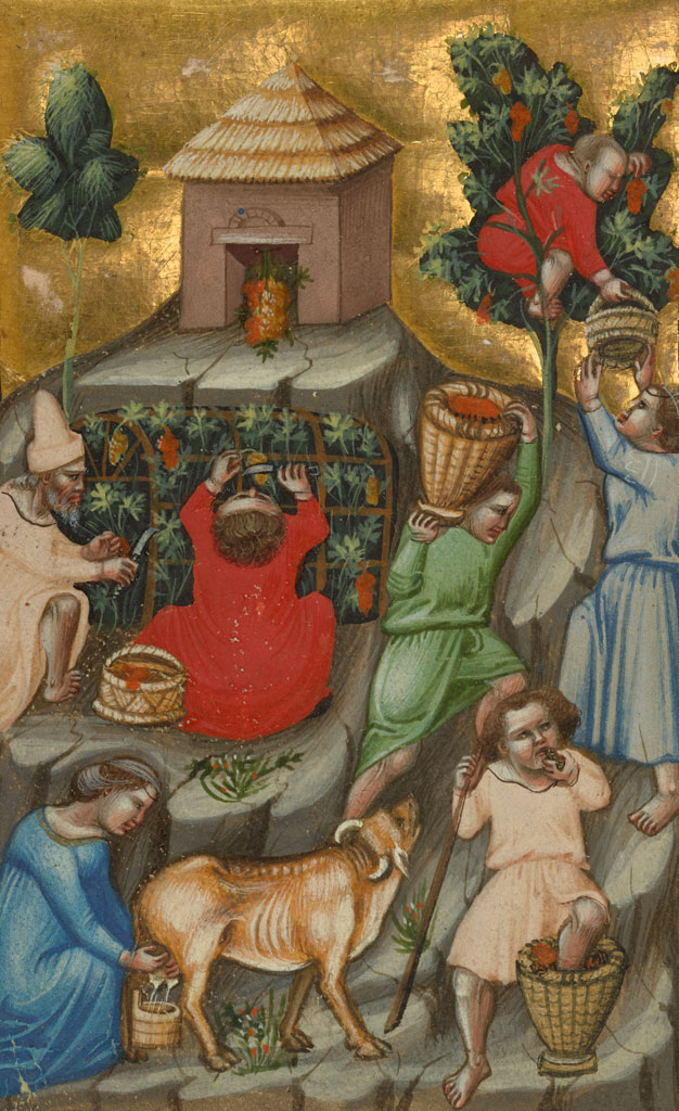 Eat drink and be merry food in the middle ages and renaissance harvest scene forumfinder Images