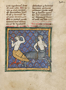 A Siren and a Centaur / Unknown Flemish artist