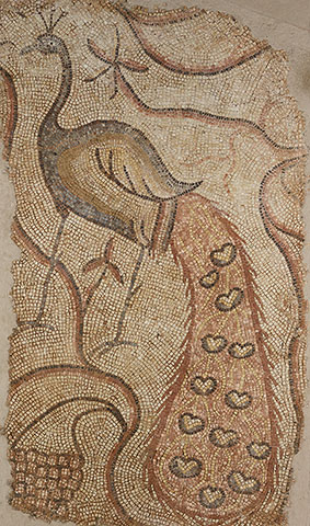 Left panel from Pair of Peacocks
