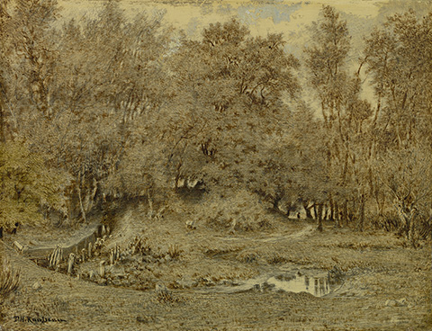 Brook in the Forest of Fontainebleau