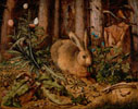 A Hare in the Forest/Hoffmann