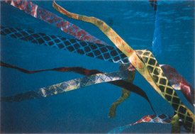 David Tudor's Sea Tails / Jackie Matisse and Robert Cassoly