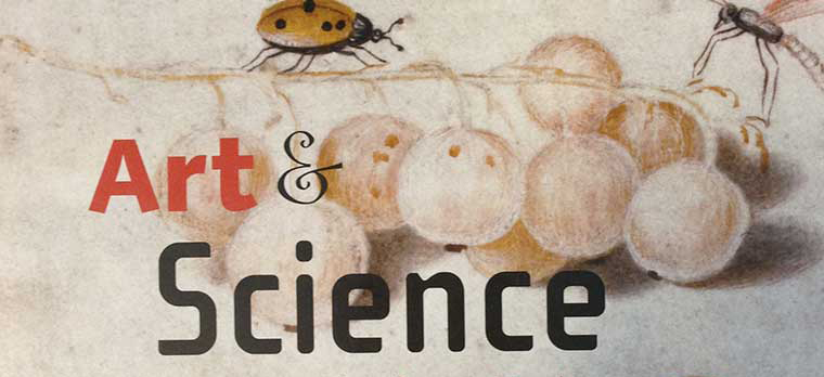 Art and Science: A Curriculum for K-12 Teachers