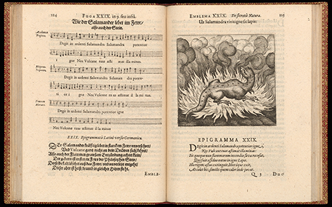 An open book with musical notation on the left and a salamander sitting unharmed in the flames of a bonfire on the right