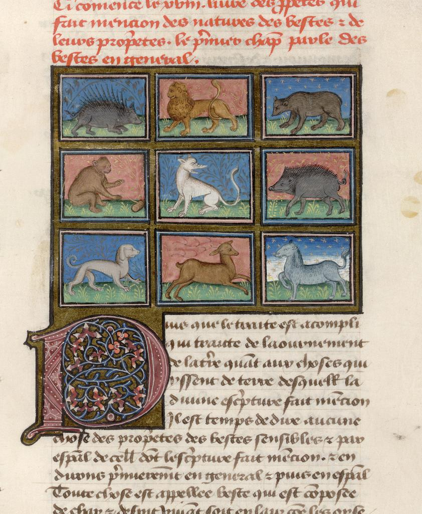 Grid with Nine Animals (detail) from On the Properties of Things (text in French), French, about 1400–1415; artist unknown, author, Bartholomaeus Anglicus. The Huntington Library, Art Collections, and Botanical Gardens, San Marino, CA, HM 27523, fol. 228