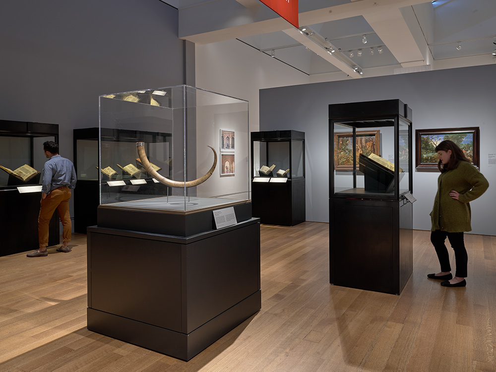 "Gallery view with Ibex Horn (""Griffin Claw""), 1500s or earlier, (Trustees of the British Museum, London) in the foreground."