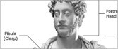 Viewer's Guide to the Roman Bust