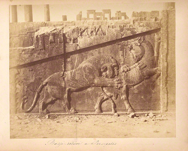 Achaemenid Relief with a Lion Attacking bull