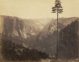 Yosemite Valley, 'Best General View,' No. 2 / Watkins