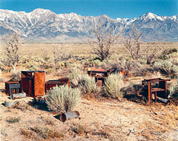 Apple Orchard, Manzanar Japanese-American Relocation Camp / Beahan and McPhee