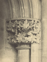 Southwell Cathedral: Chapter House Capital /  F. Evans
