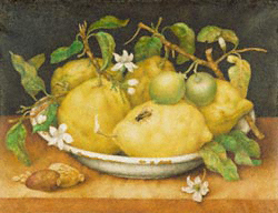 Still Life with Bowl of Citrons / Garzoni