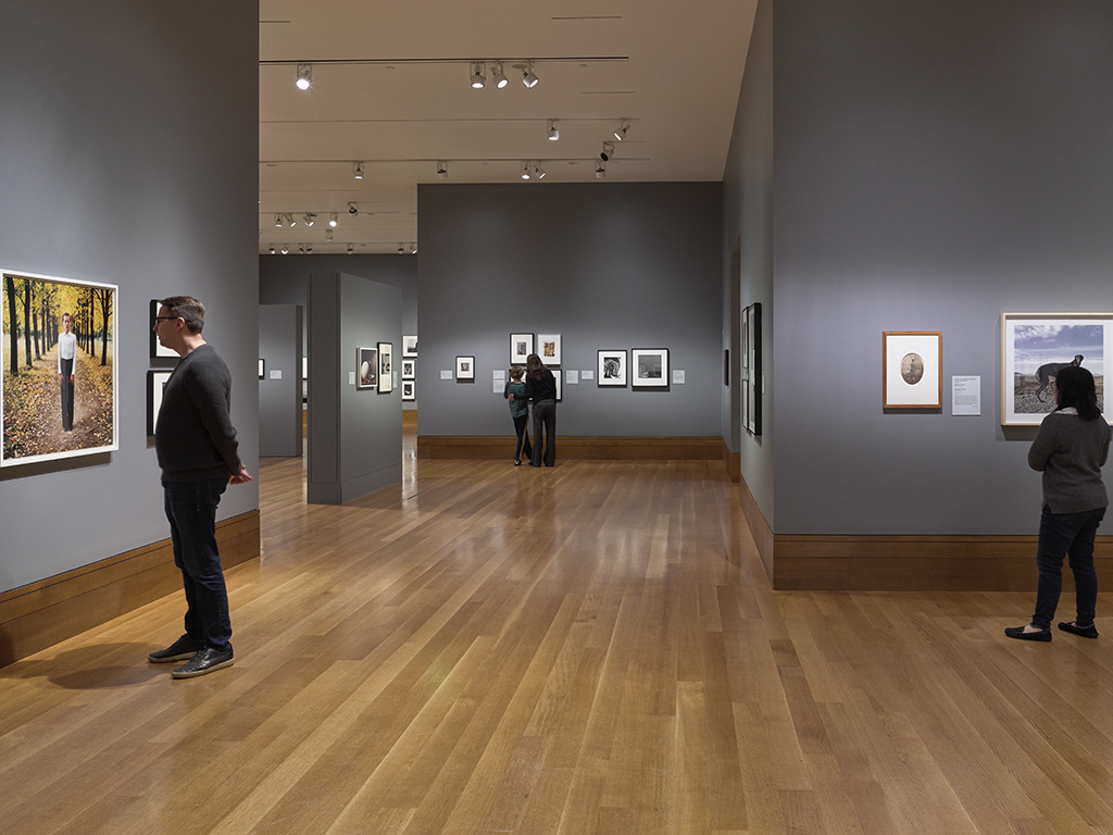 Gallery view of the exhibition.