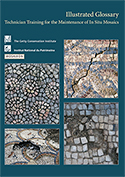 Illustrated Glossary: Technician Training for the Maintenance of in Situ Mosaics (2013)