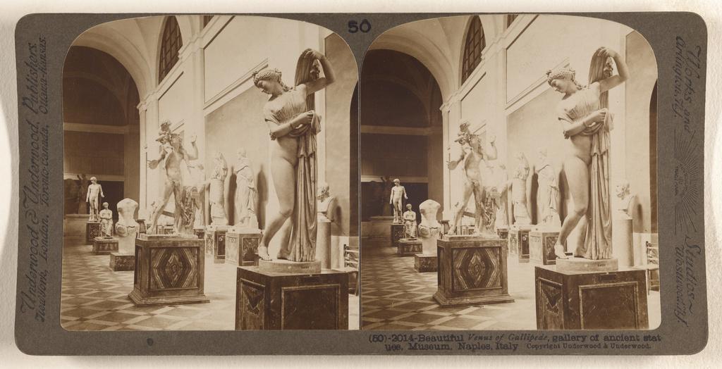 Beautiful Venus of Gallipede, gallery of ancient statues