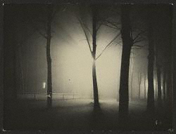 Untitled [Night View of Trees]/Feininger